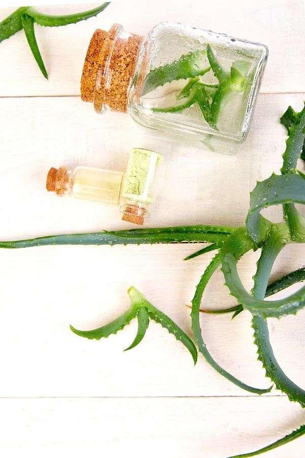 Foto de cuidado de la piel herbalife aloe vera